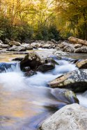 mountain-stream_21696653413_o