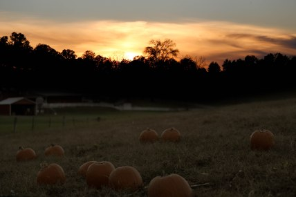 sunset-in-tennessee_22469974100_o